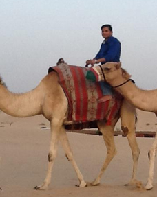 Camel Safari in the Morning