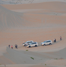 land cruisers at desert dunes