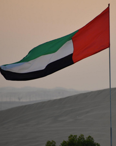 UAE flag at Al Khatim desert